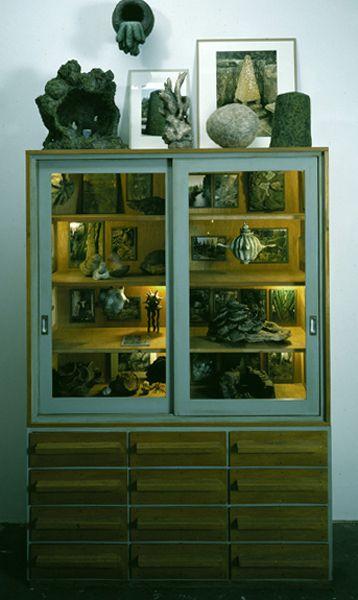93-94-Aestuarien-Wunderkammer